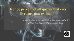 Neil Shuman quote